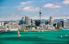 Explore all tours in Auckland