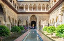 Explore all tours in Sevilla