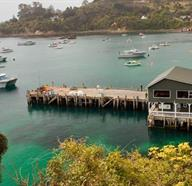 Things To Do In Stewart Island, New Zealand