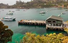 Explore all tours in Stewart Island
