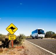 Bus Tours In Cairns, Australia