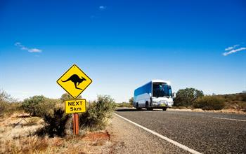 Things To Do In Cairns: Bus Tours