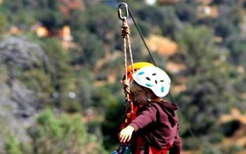 Things To Do In Puerto Viejo: Canopy Tours