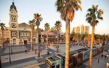 Things To Do In Adelaide: City Tours