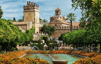 Things To Do In Cordoba: City Tours