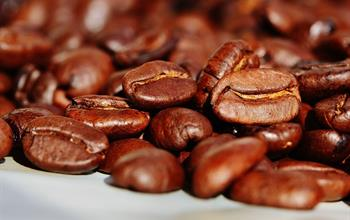 Things To Do In Ponce: Coffee Tours