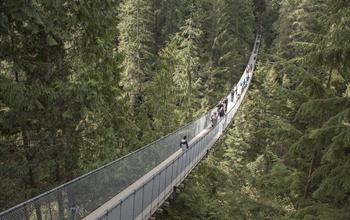 Things To Do In Vancouver: Hiking Tours