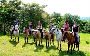 Things To Do In Boquete: Horseback Riding Tours