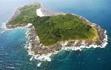 Iguana Island Tours
