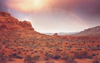 Qué hacer en Las Vegas: Excursiones Turísticas
