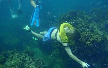 Qué hacer en Portobelo: Actividades de Agua