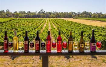 Things To Do In Perth: Wine Tours