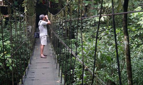 Trail of El Macho Waterfall