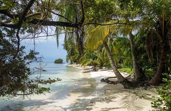 ¿Cuál es la mejor temporada para visitar San Blas?