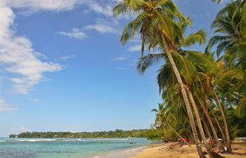 How to Get from Panama City to Bocas del Toro?