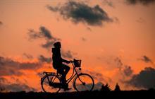Bike Tours