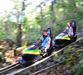 2 Days Jamaica Bobsled and Irie Blue Hole Tours
