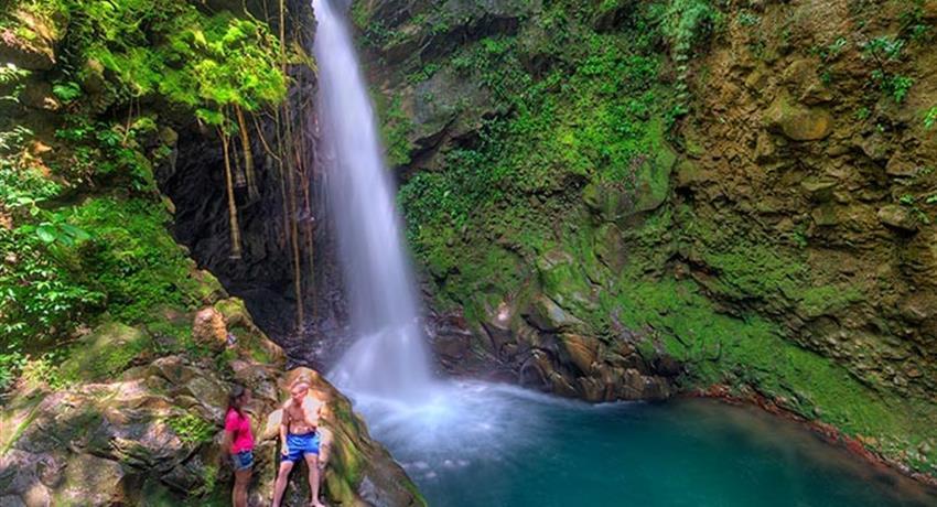 Waterfall, 2-Hour Horseback Riding to Oropendola Waterfall