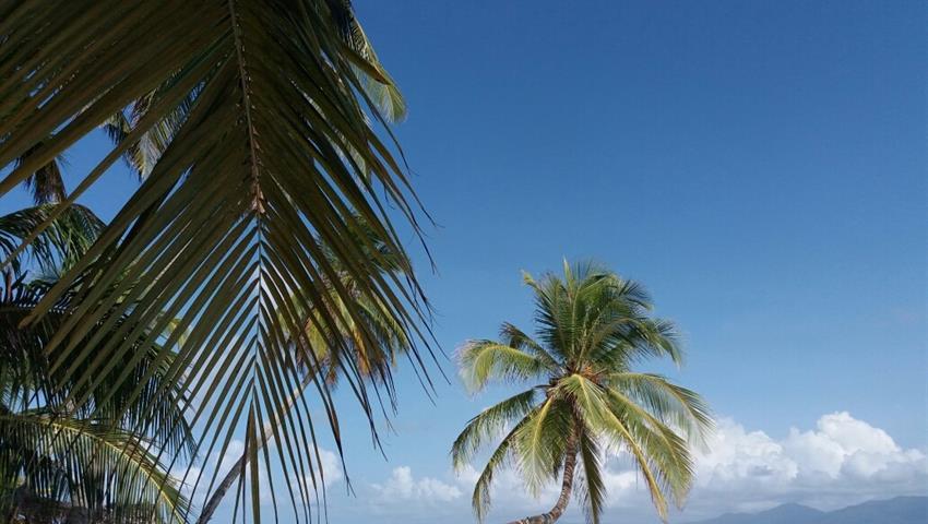 5, 3 Day / 2 Night Tour to San Blas From Panama City