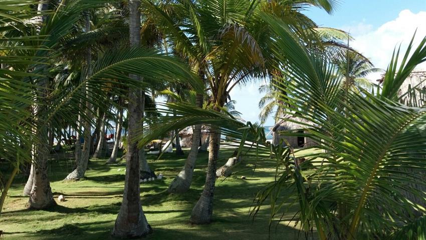 6, 3 Day / 2 Night Tour to San Blas From Panama City