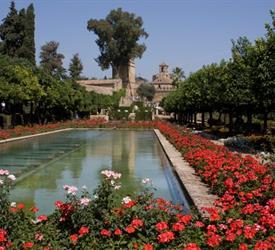 3 Hour Cordoba Tour: Alcazar, Jewish Quarter and Mosque-Cathedral