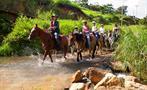 Horses, 3-Hour Horseback Ride at Los Sueños