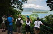 Views, 4 Hour Arenal Volcano National Park Hike