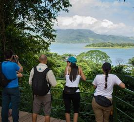 4 Hour Arenal Volcano National Park Hike
