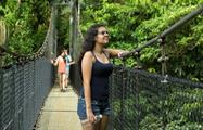 Bridge, 4 Hour Hanging Bridges Tours