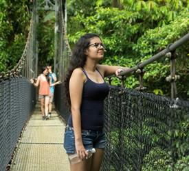 4 Hour Hanging Bridges Tours