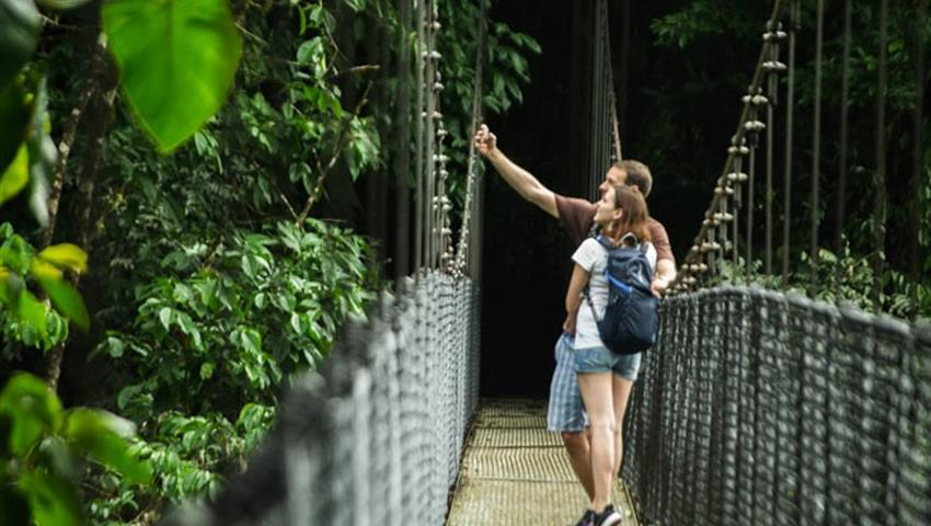 photo, 4 Hour Hanging Bridges Tours