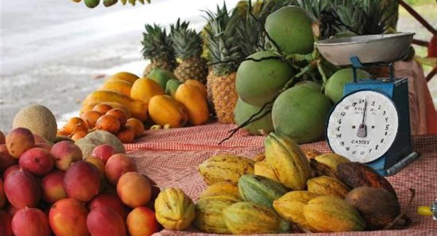 Fruit, 7-Hour Tour Cahuita National Park
