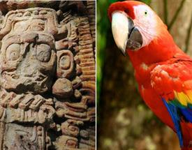 Copán Tour From Antigua