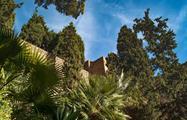 Garden that surrounds the alcazaba - tiqy, Alcazaba Walking Tour