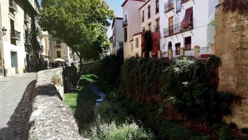 Granada city Tour Paseo de los tristes, Granada Panoramic Train