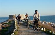 Malaga bike tours and rentals ocean, Alternative Malaga Route