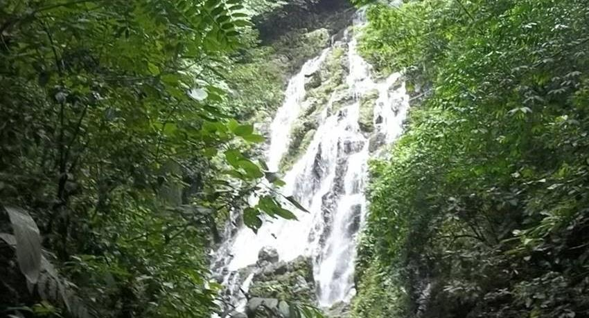Forest Anton Valley Waterfall Panama, Anton Valley Full Day Tour From Beach Hotels