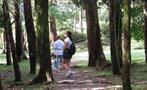 Wild Panama Forest Anton Valley, Tour De Un Día Completo En El Valle De Antón Desde Hoteles de Playa