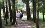 ANTON VALLEY FULL DAY TOUR FROM PANAMA CITY 4, Anton Valley Full Day Tour From Panama City