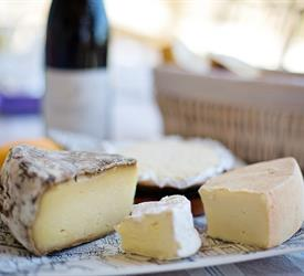 Basque Cheese Tour, Food And Drink Tours in Bilbao, Spain