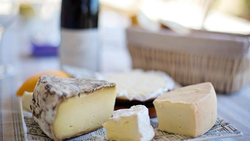 Basque Cheese Tour, Basque Cheese Tour