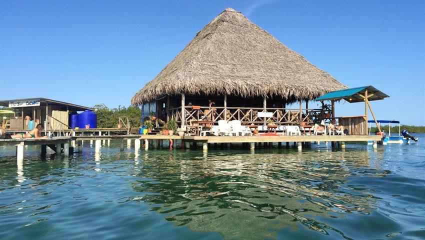 Blue coconut, Bastimentos Island hopping Day Tour