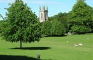 Bath Day Trip of Jane Austen-TIQY 7, Bath Day Trip of Jane Austen