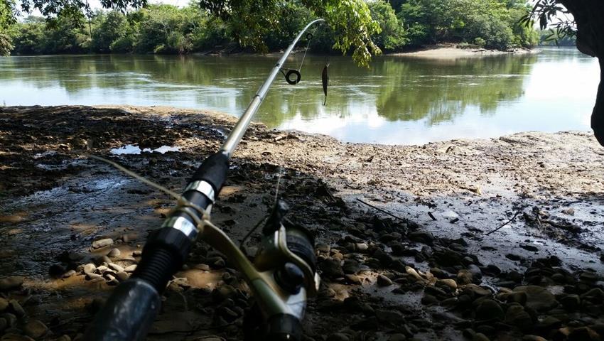 3, Pesca en Lago Bayano