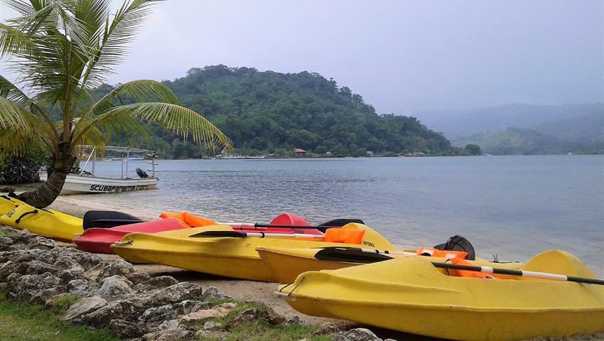 Kayak beach day, Beach Day at Private Island