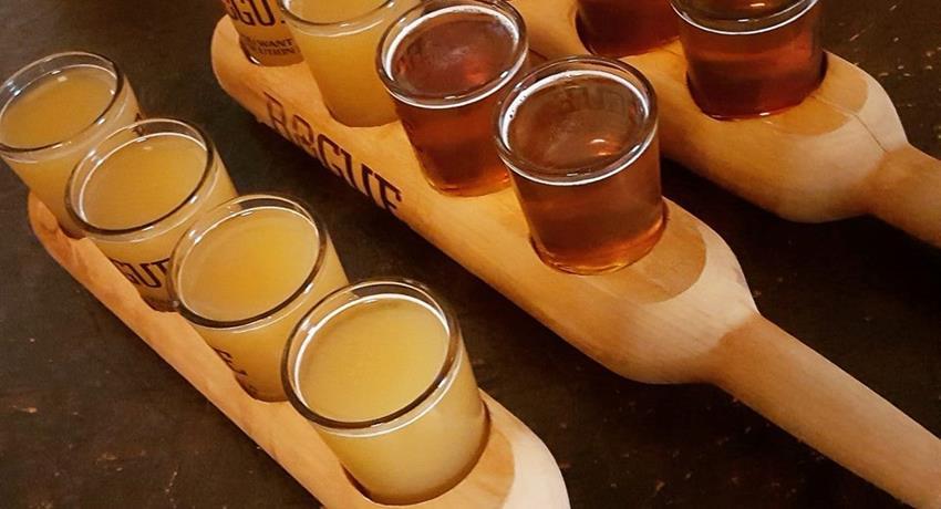 Beer Tasting Tiqy, Gran Sorbo en Soma