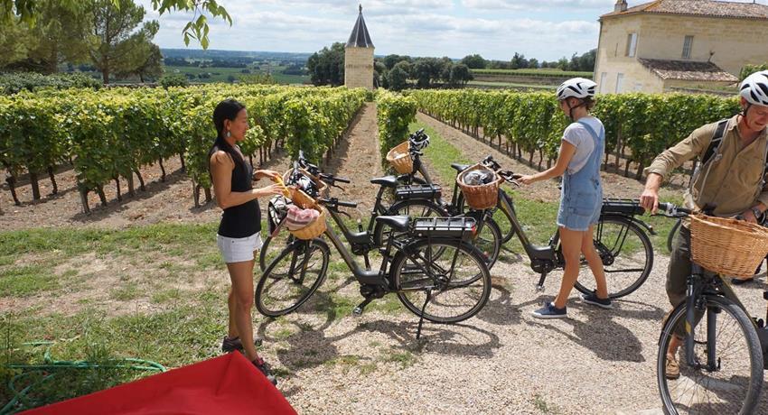 wine vineyards, Bike Electric Saint Emilion