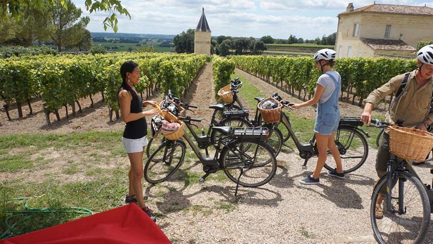 wine vineyards, Bike Electric Saint Emilion