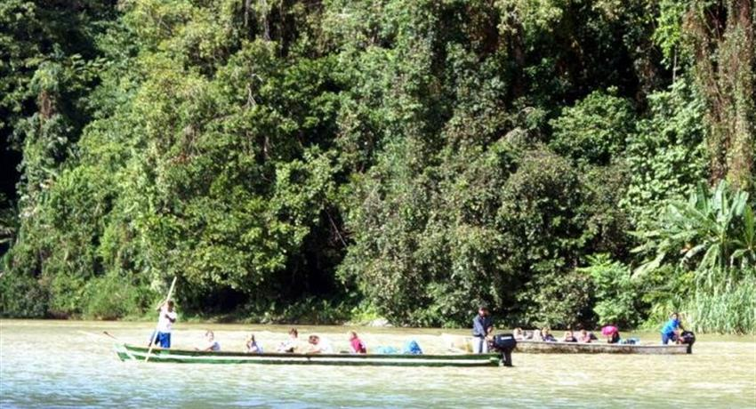5, Bonyik: Infinite Adventure in Jungles and Rivers to Discover
