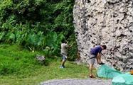 2, Boquete Guided Rock Climbing